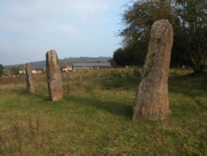 harald stones